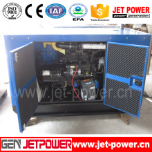 Ce Approved Ricardo Soundproof Diesel Generator (R6105AZLD)
