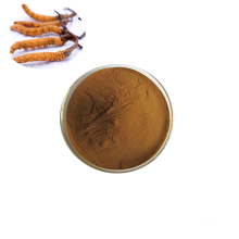 High Quality Pure Natural Lowest Price Bulk Powder Cordyceps Sinensis Extract