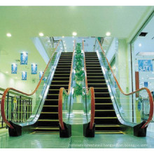 1000mm 0.5m/S Electric Residential Price Outdoor Escalator