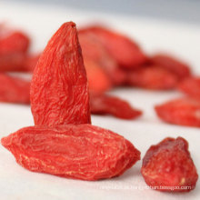 Nêspera Goji Berries Chinês Wolfberry Himalaia Goji Berry