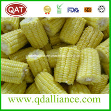 IQF Frozen Cut Corn Made From Super Sweet