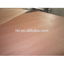 natural sapele faced plywood