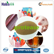sorts of industries Protease Enzyme