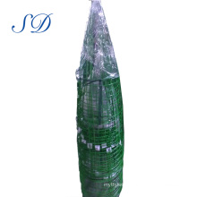 Best-Selling Powder Coated Galvanized Tomato Cage