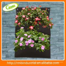 Jardin vertical vert (RMB)