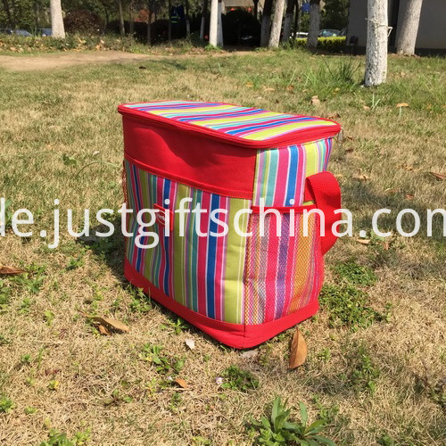 Item Name-Promotional Vertical Stripe Henkel Cooler Bags_4