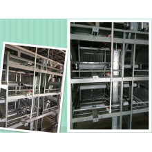 New Design and Large Capacity of Full Automatic Broiler Cage