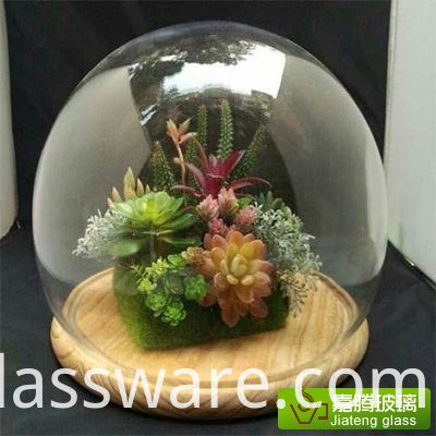 used glass display cases (2)