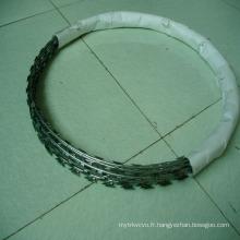 Wire de barrière de coussin de concertine / ailettes / arachides grillagées (HPZS-1004)