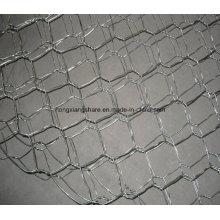 Givion gincnisé à haute teneur en zinc à haute teneur en zinc