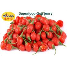 Ningxia Goji Biologique Wolfberry Chinois