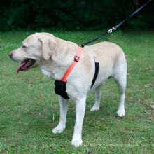 O animal de estimação fornece o chicote de fios reflexivo do cão nenhuma veste do chicote de fios do cão de animal de estimação da malha da tração