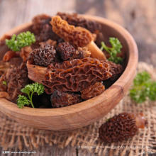 сушеный гриб сморчок