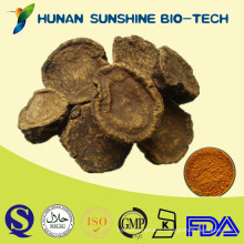 Traditional Chinese Herb Rhubarb P.E. Rhubarb root Extract Powder