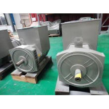 Brushless Excitation Synchronous Double Bearing Alternator