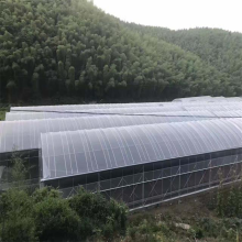 Plastic PE Film Greenhouse