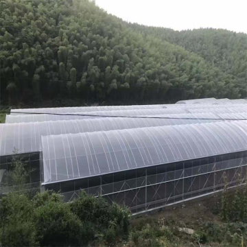 Economical poly tunnel greenhouse for agriculture used