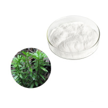 Wholesale natural Huperzia Serrate P.E. Huperzine extract  powder