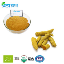 Curcumin pharmaceutical grade 95 extract powder price