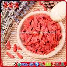 Свежие плоды годжи какие ягоды годжи ягоды годжи питания в китайской медицине