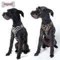 Safari-weicher Haustier-Sicherheits-Geschirr-neuer Entwurfs-Hund führte Geschirr-Großhandelskleines Hundegeschirr.
