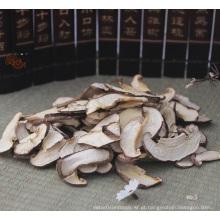 Preços mais vendidos para Shiitake Shred secos