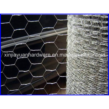 Hot DIP Galvanized Hexagonal Wire Netting