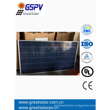 Great Solar 300W Poly Solar Panel with High Efficiency and Good Quality