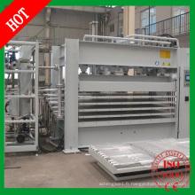 Hot Press Type de machine et nouvelle condition Machine de pressage à chaud à laminaison à courte durée