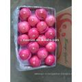Цена на свежее Яблоко от Яньтай, Китай