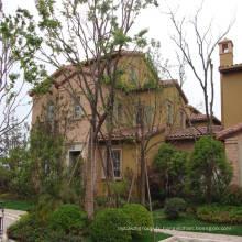 maisons d'habitation préfabriquées villas à structure métallique légère