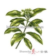 Eucommia Leaf Extract 30% (ElE110301)