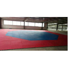 Standard Octagon Shape Mats for Karate, Taekwondo