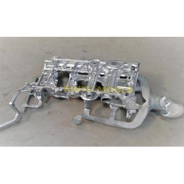 Automobile Engine Cylinder Bottom Cover diecasting mould