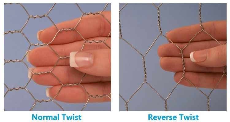 Hexagonal Wire Mesh c