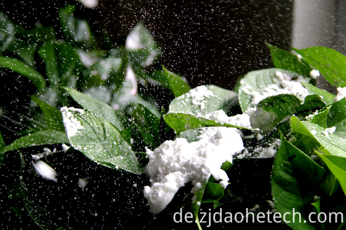 Winter Design Snow Spray