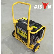BISON (КИТАЙ) 110V 220V Переносной электромотор небольшой электрический генератор 3KW Бензиновый генератор