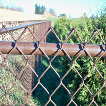 Chain+link+fence+mesh