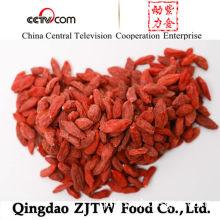 Top Quality Organic and FDA Certified Chinese Organic Goji Berry Goji