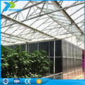 One-Stop-Gärten Gewächshaus Polycarbonat Blatt, China Polycarbonat Blatt Projekt