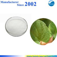 Hochwertige Natur Rotundine, Rotundine Powder