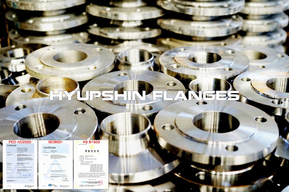 Hyupshin Flanges Stainless Steel