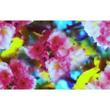 Цветок печати высокой эластичной ткани swimwear (ASQ091)