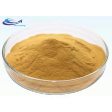 Organic Soybean Extract Soy Isoflavones Powder
