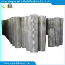 Hot Sales Electro Galvanized Welded Wire Mesh