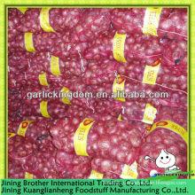 5-7 Китай новый урожай красный лук