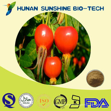 Natural Rose Hip Fruit P.E. Rosa canina as Food Supplement Ingredients
