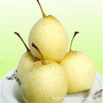 2016 Wholesale Price Fresh Pear in China