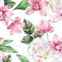 Organic Cotton Percale Printed Fabric
