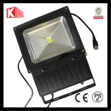 LED-Bridgelux 100W im Freien PFEILER LED Foodlight